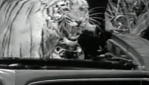 1966-Pontiac-GTO-Commercial