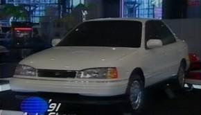 1991-nyas1